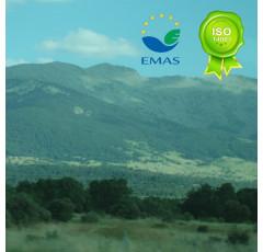 SISTEMAS DE GESTIÓN AMBIENTAL EMAS e ISO 14001.