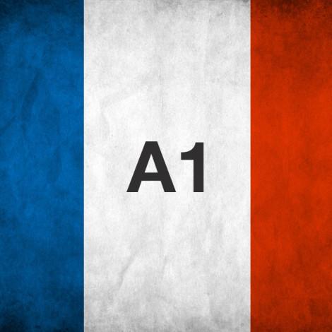 Francés a1.