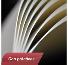 Curso de Gestión de nóminas y seguridad social con prácticas