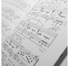 Curso de Música Como Recurso Educativo