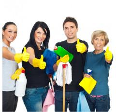 Curso de Mantenimiento, Limpieza y Organización del Domicilio de Personas Dependientes