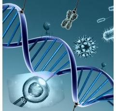 Curso de Actualización en Estudios de Inmunología y Genética