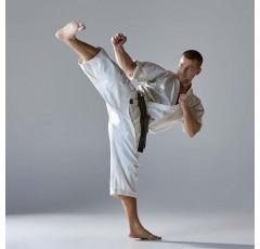 Curso de Karate. Técnica, entrenamiento y competición