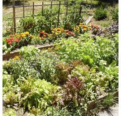 Curso de agricultura ecológica avanzada