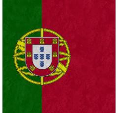 Curso de Portugues.