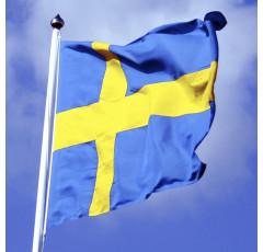 Curso de Sueco (nivel básico)
