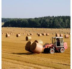 Curso de Agricultura Ecológica en Secano