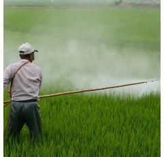Curso de Biopesticidas de Origen Vegetal
