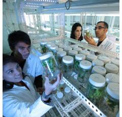 Curso de Química Agrícola