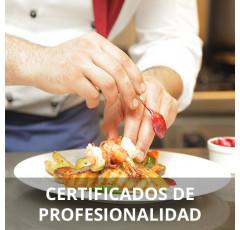 Curso de Cocina (Preparatoria)