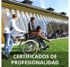 Curso de Atención al Alumnado con Necesidades Educativas Especiales en Centros Educativos certificado