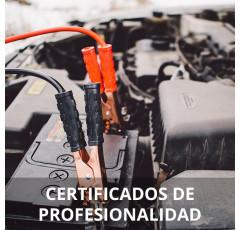 Curso de Mantenimiento de los Sistemas Eléctricos y Electrónicos de Vehículos certificado