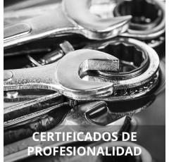 Curso de Operaciones Auxiliares de Mantenimiento en Electromecánica de Vehículos certificado