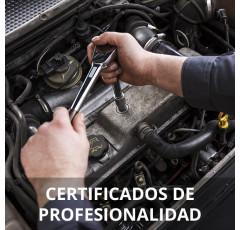 Curso de Mantenimiento del Motor y sus Sistemas Auxiliares certificado