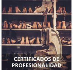 Curso de Reparación de Calzado y Marroquinería certificado