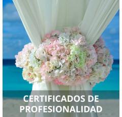 Curso de Cortinaje y Complementos de Decoración certificado