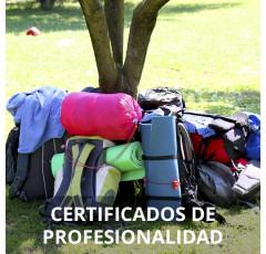 Curso de Dinamización, Programación y Desarrollo de Acciones Culturales certificado