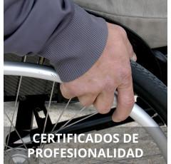 Curso de Inserción Laboral de Personas con Discapacidad certificado