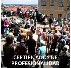 Curso de Dinamización Comunitaria certificado