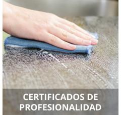 Curso de Limpieza de Superficies y Mobiliario en Edificios certificado