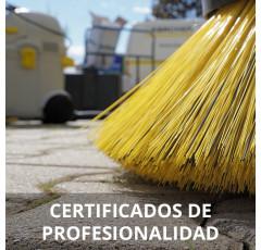 Curso de Limpieza en Espacios Abiertos en Instalaciones Industriales (Preparatoria)