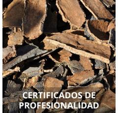 Curso de Fabricación de Objetos de Corcho certificado