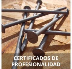 Curso de Acabado de Carpintería y Mueble certificado