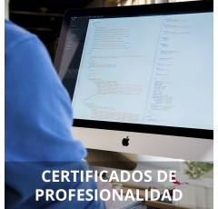 Curso de Programación de Sistemas Informáticos certificado