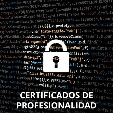 Curso de Seguridad Informática certificado