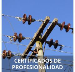 Curso de Montaje y Mantenimiento de Redes Eléctricas de Alta Tensión de Segunda y Tercera Categoría y Centros de Transformación