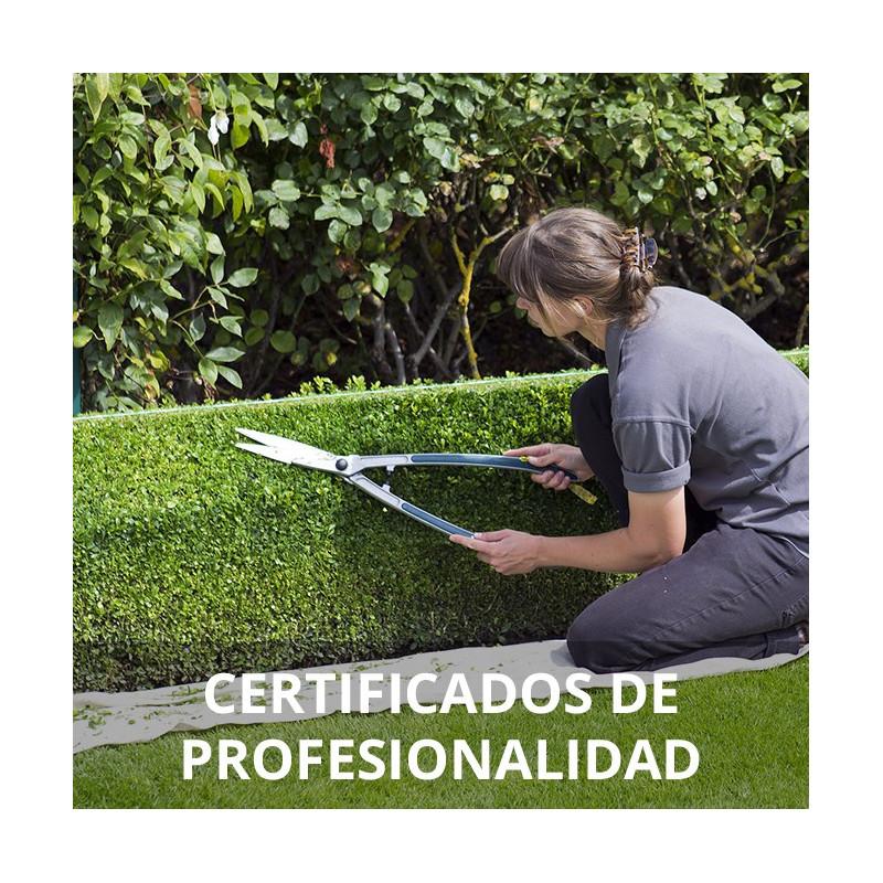 Curso de jardiner a y restauraci n del paisaje for Aprender jardineria