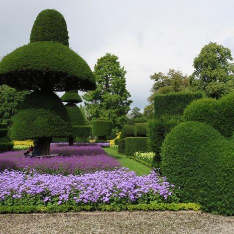 Curso de poda de rboles y arbustos ornamentales cursos for Arbustos ornamentales de exterior