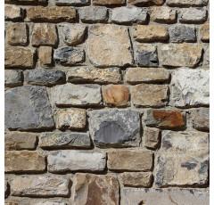 Curso de Ejecución de Muros de Mampostería