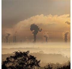 Curso de Técnico en Evaluación de Impacto Ambiental