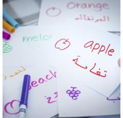 Curso de Árabe (Nivel Básico)
