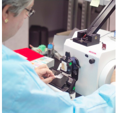 Curso de Enfermedades Autoinmunes y el Laboratorio con prácticas