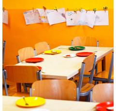 Curso de Nutrición en la Educación