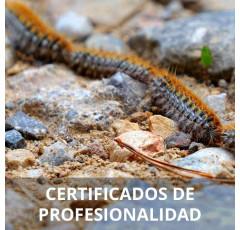 Servicios para el control de plagas (Preparatoria)