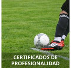 Gestión de la Instalación y Mantenimiento de Céspedes en Campos Deportivos (Preparatoria)
