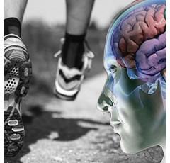Curso de Psicología del Deporte