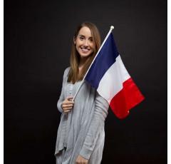 Curso de Francés 2 nivel intermedio - avanzado