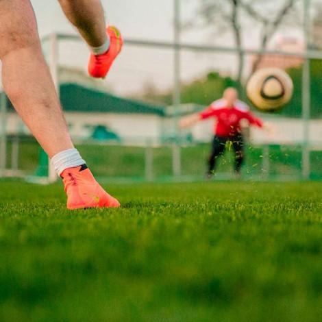 Curso de Formación teórica para el entrenamiento físico de fútbol
