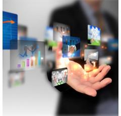 Curso de la Publicidad Aplicada a la Pequeña y Mediana Empresa
