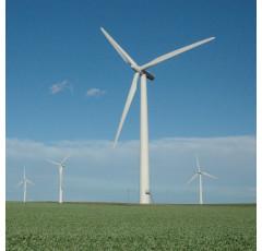 Curso de Gestión de Proyectos de Montaje de Instalaciones de Energía Eólica
