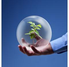 Curso de Gestión Medioambiental. Conceptos Básicos