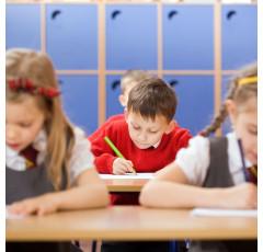Curso de Animación a la Lectura en la Etapa de Educación Primaria